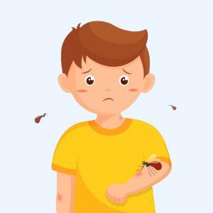 Thuốc bôi chống muỗi